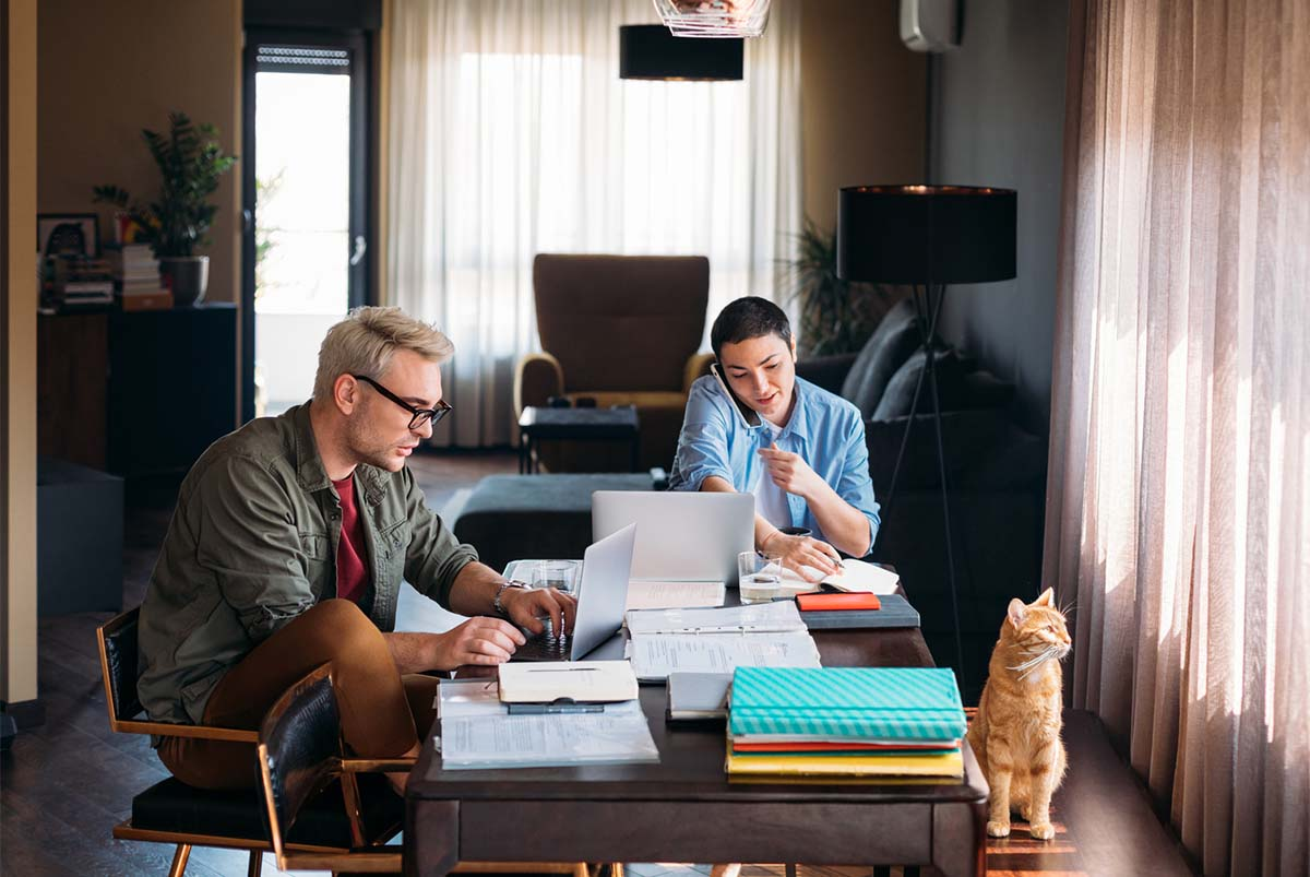 Two people and cat working in home office